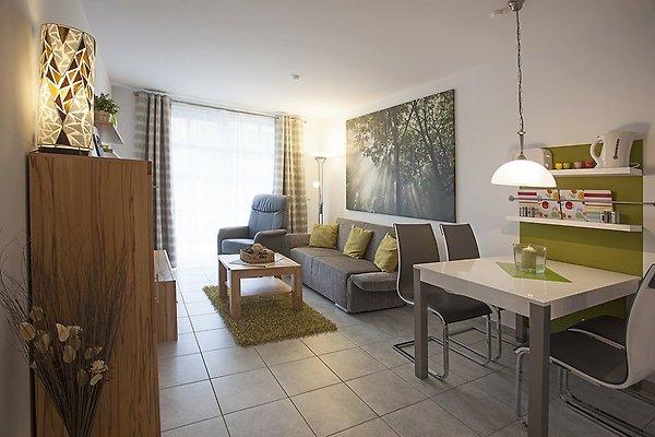 residenz am balmer see 40 ferienwohnung in benz mieten. Black Bedroom Furniture Sets. Home Design Ideas