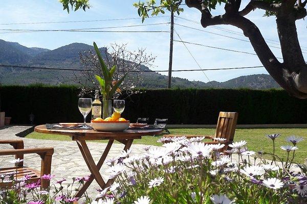 Obere Terrasse mit privatem Gartenbereich