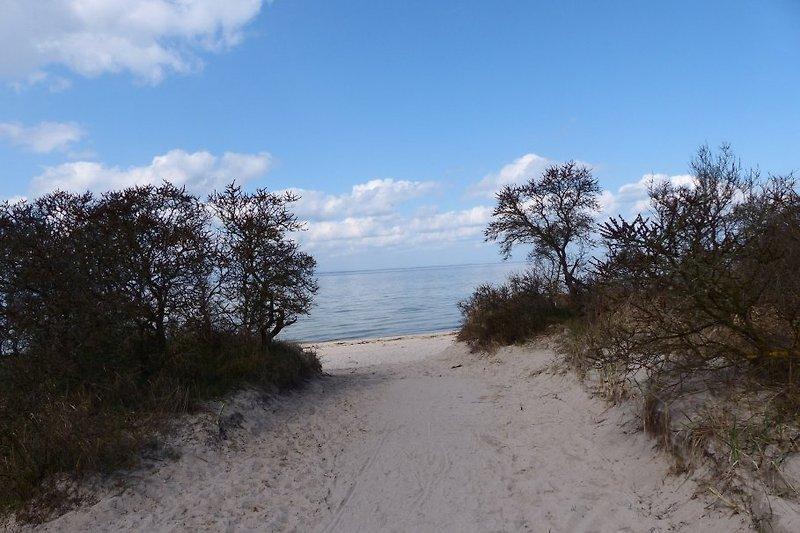 Strandzugang bei Barendorf