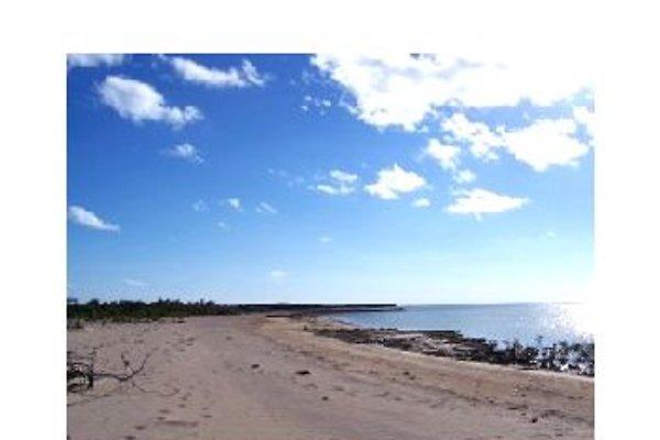 DeBora's Bahamas Dreamscape in Salt Pond - immagine 1