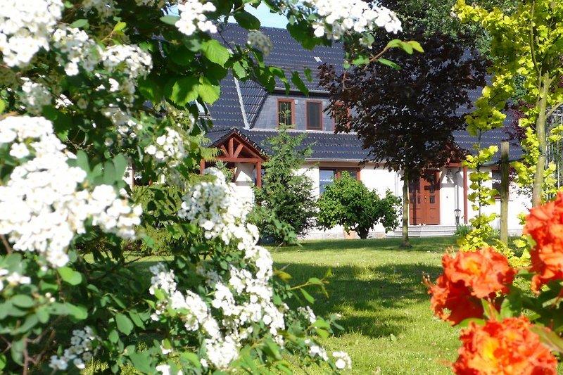 Maison de vacances à Radeberg - Image 2