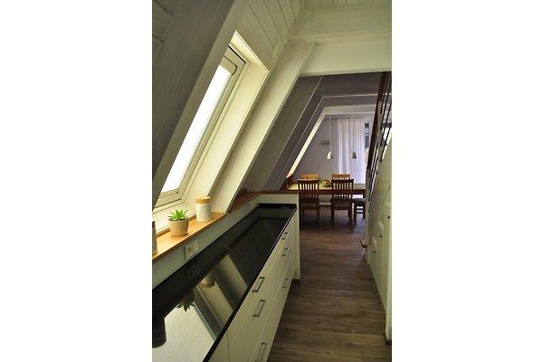 ferienhaus meinhaus ferienhaus in damp mieten. Black Bedroom Furniture Sets. Home Design Ideas