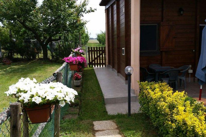 kleine Hütte in Sabaudia - Bild 2