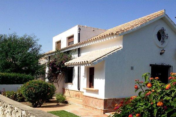 Ferienhaus La Acacia