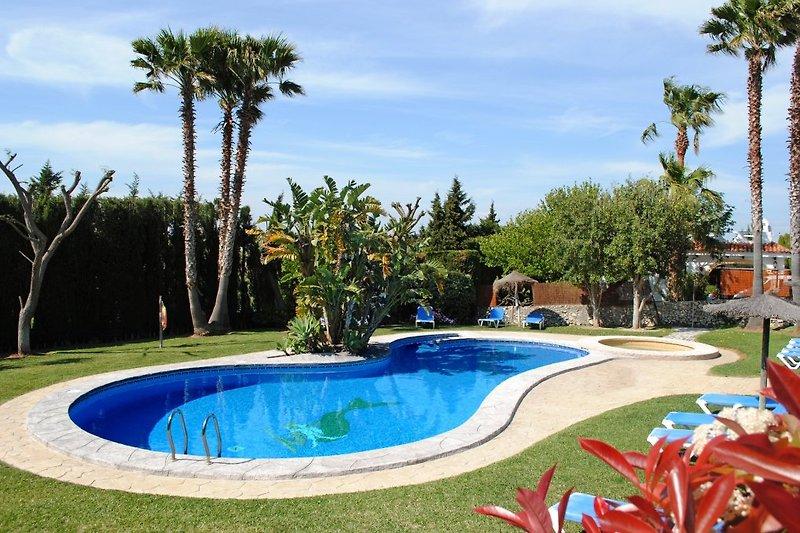 Poolbereich Finca El Cernícalo