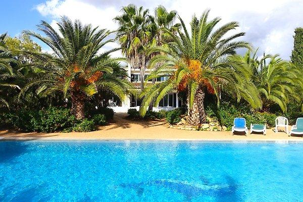 Encantadora villa con piscina para 12 P en Llucmajor - imágen 1