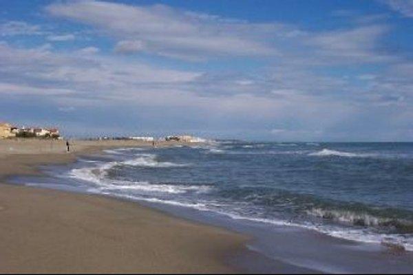 App.mit Loggia front de mer à Le Barcares - Image 1