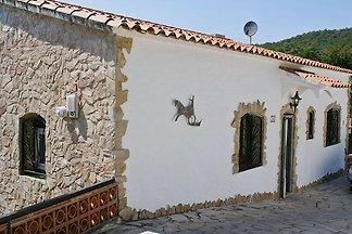 Casa Alguer 24