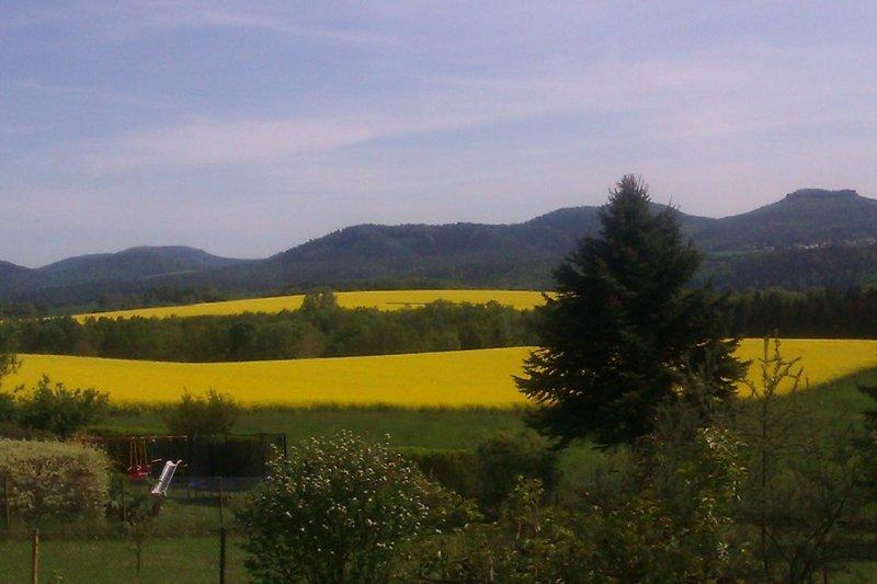 Panoramablick aus den Ferienwohnungen und Garten...