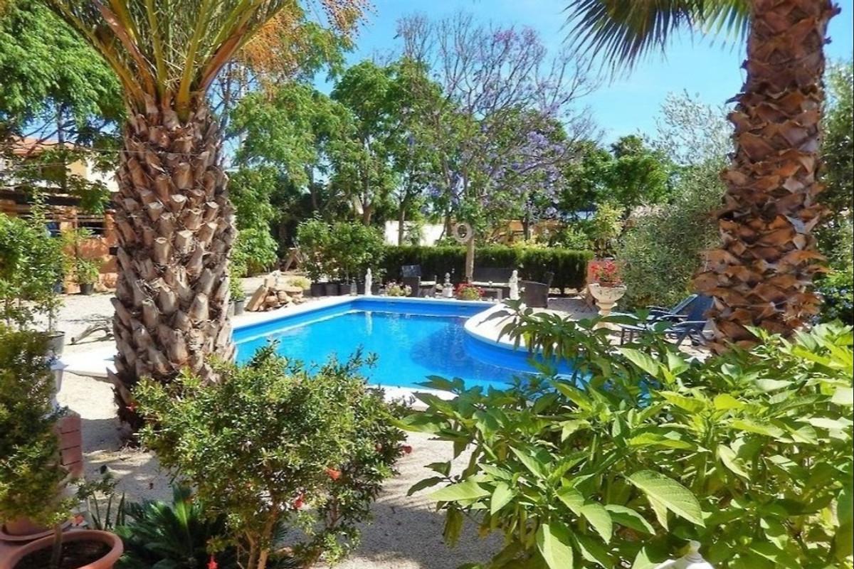 zemljište s palmama na imanju vode bay area dating događanja