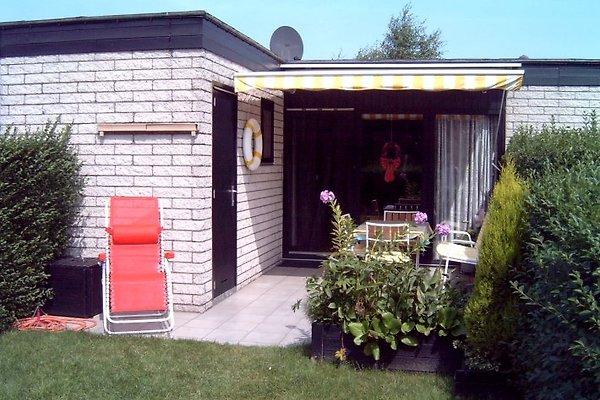 Ferienhaus in Westende in Westende - immagine 1