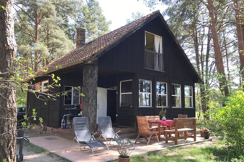 Holzhaus im Kiefernwald