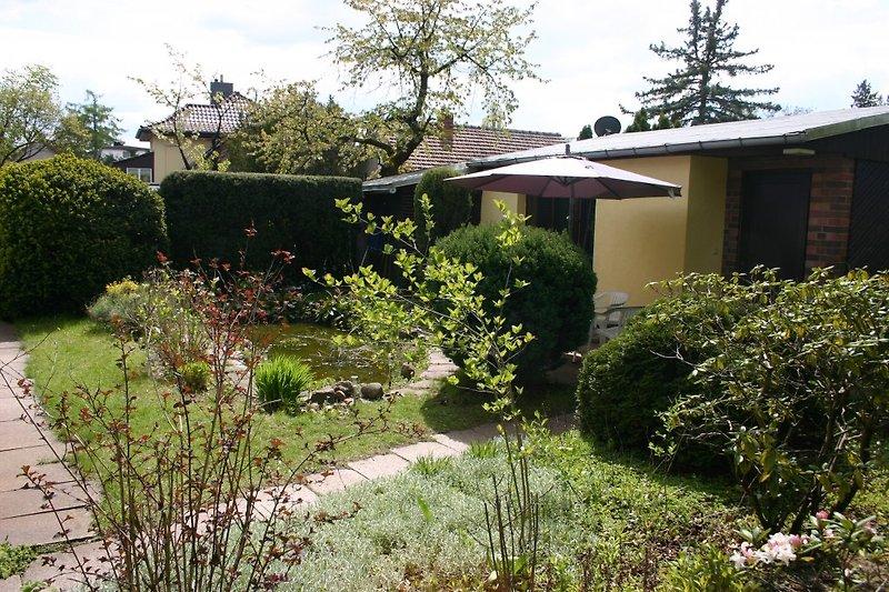 Das Haus mit Garten und Teich