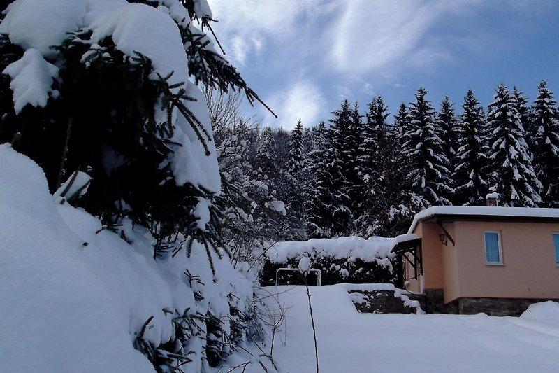 FH-im Winter