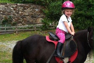 Familienbauernhof  Ponyhof