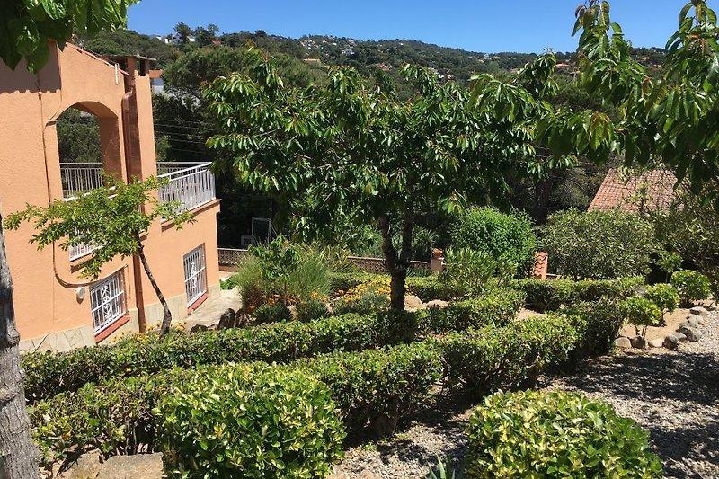 Garten - Blick ins Grüne