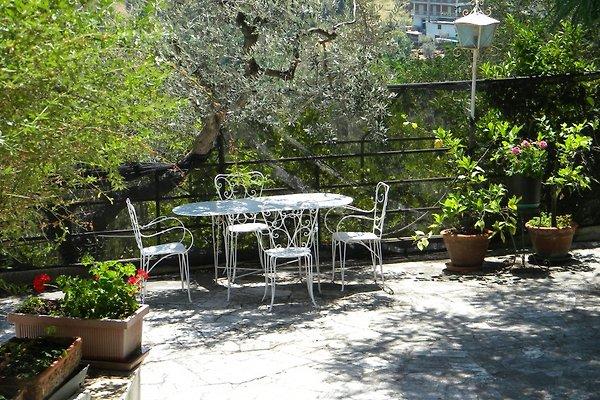 Villa mit herrlichem Meerblick in Cupra Marittima - Bild 1