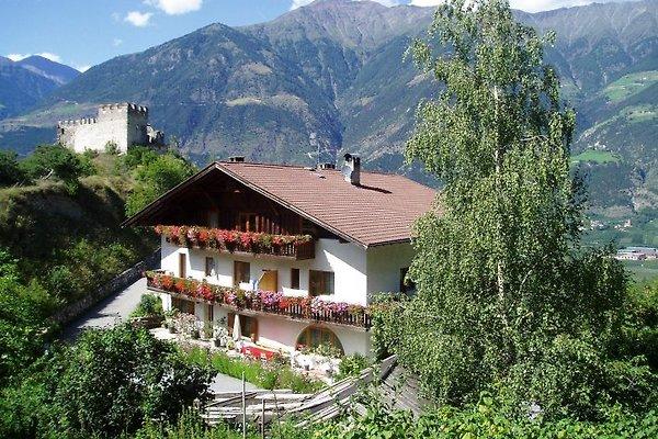 Cortile di Montani in Latsch - immagine 1