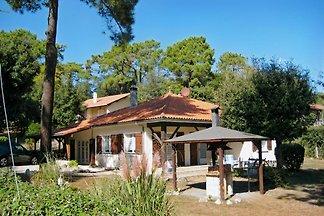 Soulac s. mer-Chez belle pin vert-