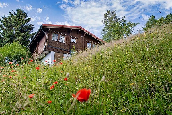 finnisches ferienhaus am sommerberg ferienhaus in fehrenbach mieten. Black Bedroom Furniture Sets. Home Design Ideas