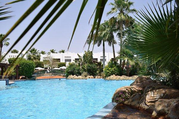 Tropisches Grün und 12 Swimmingpools für einen unvergesslichen Urlaub