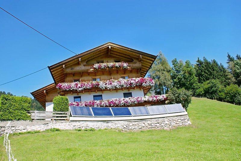 Ferienwohnungen Haus Bergheim