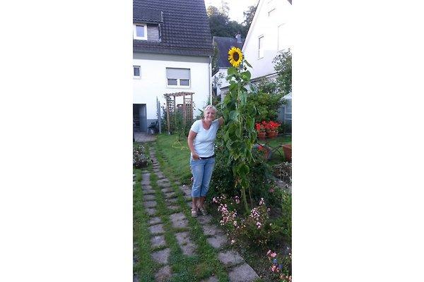 Frau B. Schröder