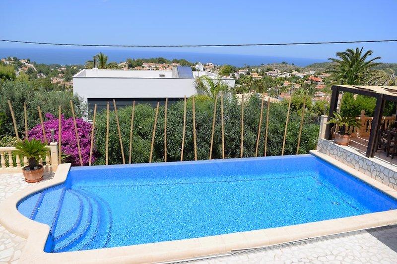 Blick auf den Infinity Schwimm Pool 5 x 10 Meter vom Wohnzimmer
