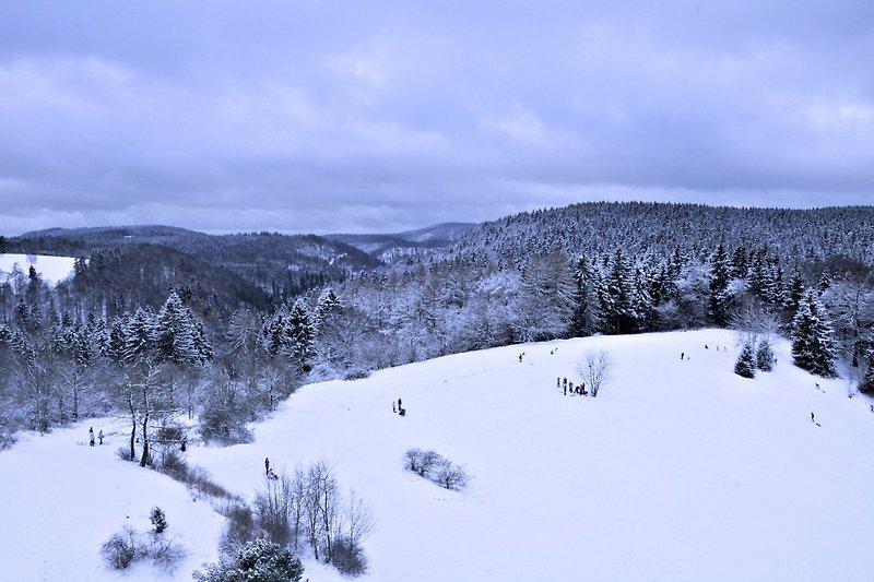 Die Majestätische Aussicht im Winter