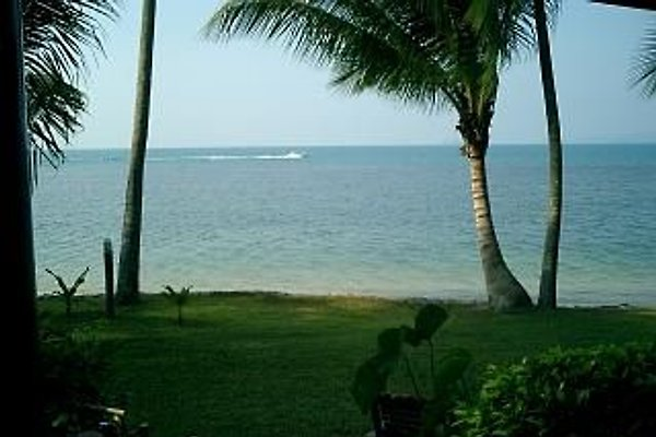 Deluxe Beach House  in Koh Samui - picture 1