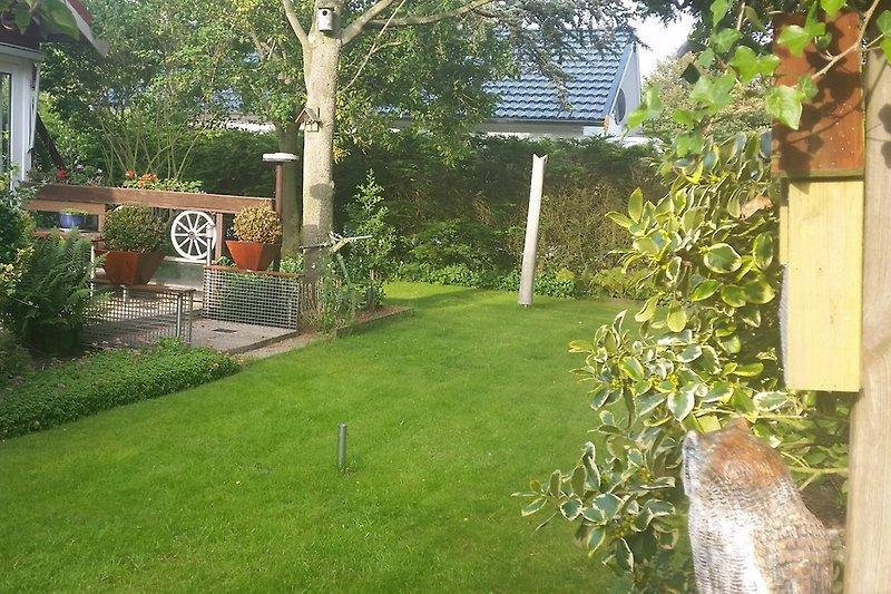 Ein grüner sonniger geschlosser Garten