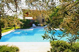 Superb villa with garden and private pool immersed in the vineyards of Bolgheri