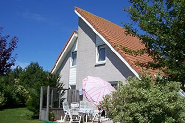 Lux Fewo Zeeland-Village ZV-80 in Scharendijke - immagine 1
