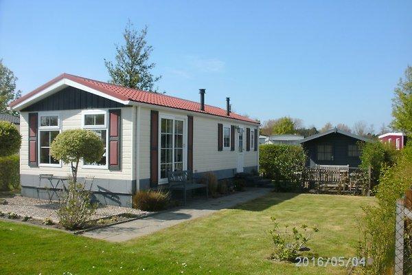 Luxe 4-6p mobile home chalet K21 à Scharendijke - Image 1