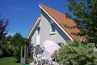 Ferienhaus Zeeland-Village ZV-80