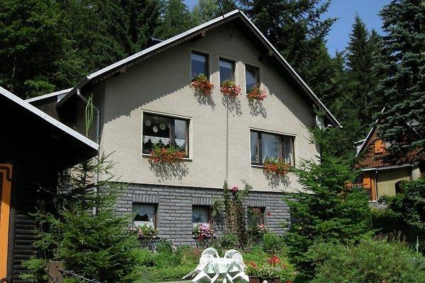 zum Waldhaus - Ferienwohnung à Auerbach - Image 1