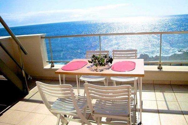 Apartment auf Teneriffa in vorderster Reihe am Meer mit Balkon und Dachterrasse