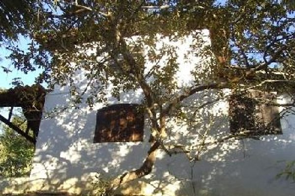 Chalé auf Santa Barbara in Paraty - Bild 1