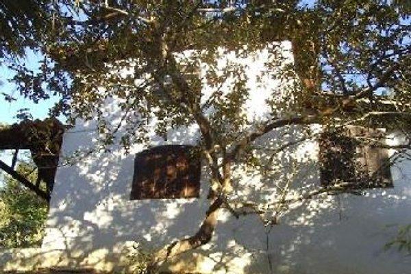 Chalé auf Santa Barbara in Paraty - immagine 1