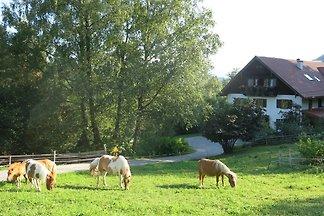 Apartamento Vacaciones familiares Salzburg
