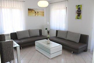 Apartment Čeko Žarko