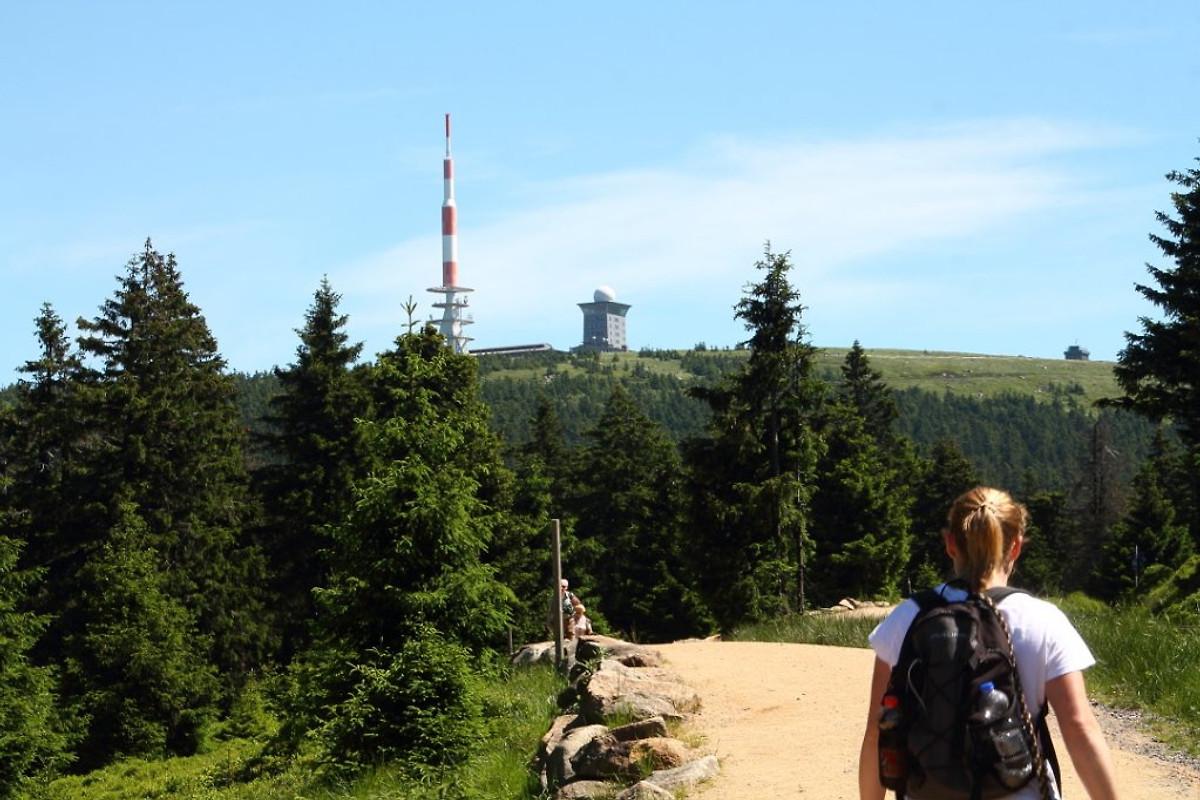 Puff aus Oberharz am Brocken