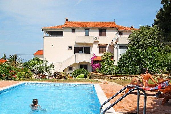 """Villa """"PISCINA Y TENIS"""" en Kampor - imágen 1"""