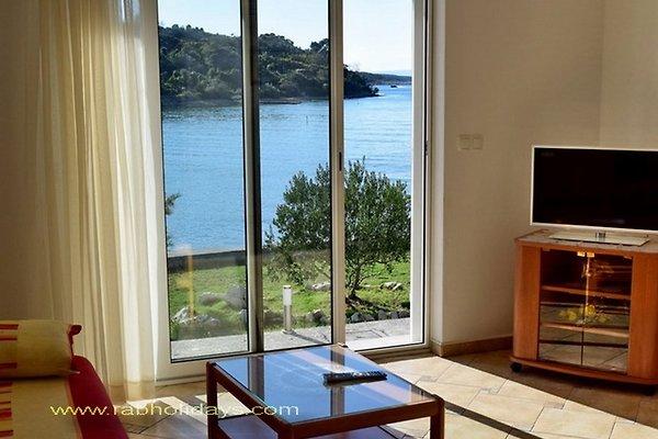 haus ivica am meer alleinnutzung ferienhaus in kampor mieten. Black Bedroom Furniture Sets. Home Design Ideas