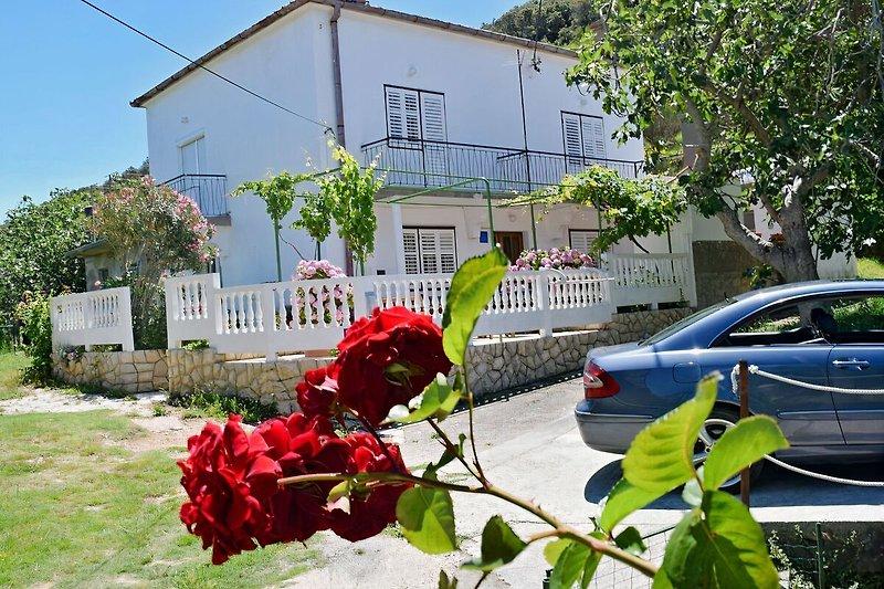 Haus Marica