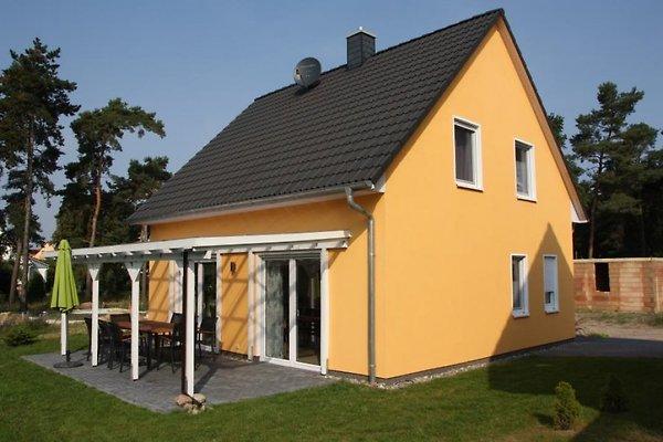 Typ 2 FeHa - Ferienhaus K 99 Müritz in Röbel/Müritz - Bild 1