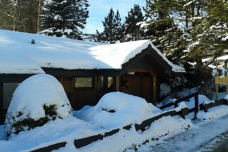 Woodland Lodge im Winter
