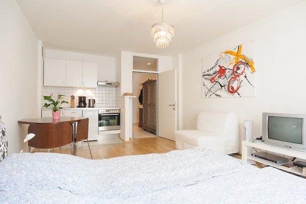 Apartament w Wiedeń Innere Stadt - zdjęcie 1