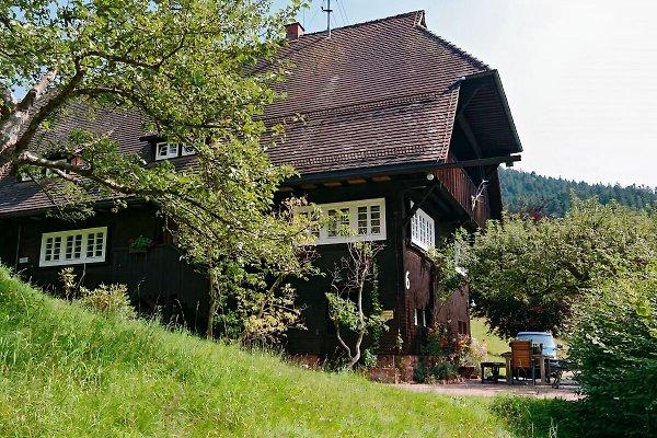 Casa de vacaciones en Bad Rippoldsau-Schapbach - imágen 1