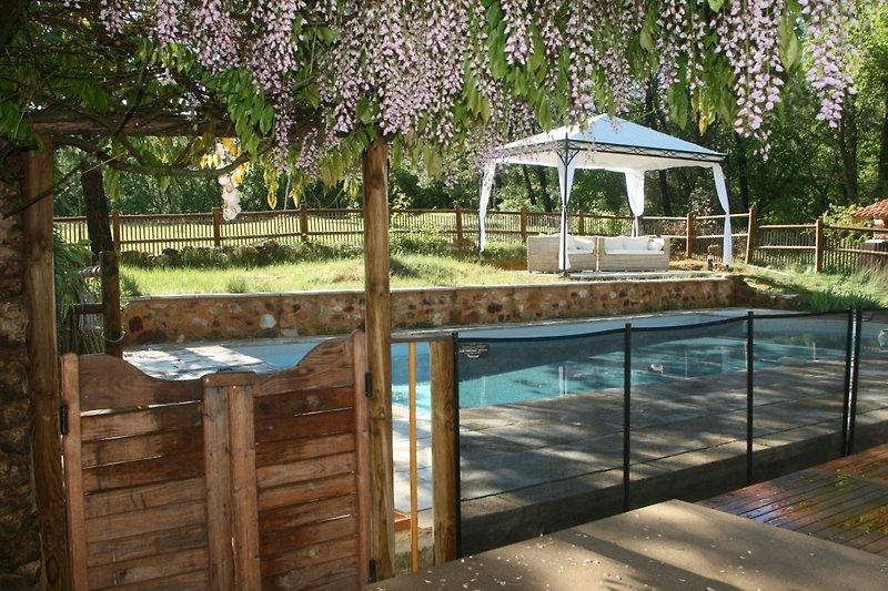 piscine et pergola vues de la terrasse
